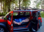 A view of my Honda Element with comforters spread inside.